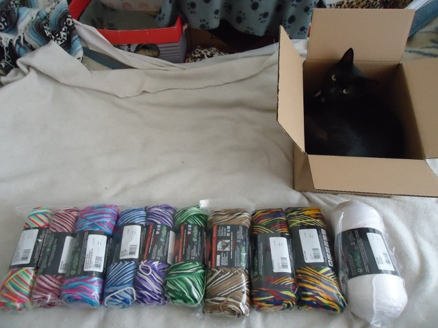 All unpacked! Um, sort of.  Yarn's in plastic bags, because I'm paranoid. All of these I currently use a lot except the one on the left end, it's new to me... I think it'll work well, although the photo on the site didn't really convey the colours all that accurately. Yes, there's two of the rainbow one beside the white: it's the one colour I use more than any other, and I'm constantly running out! The four at the end are larger than the other six, just a matter of what's available in which line, but all Red Heart.